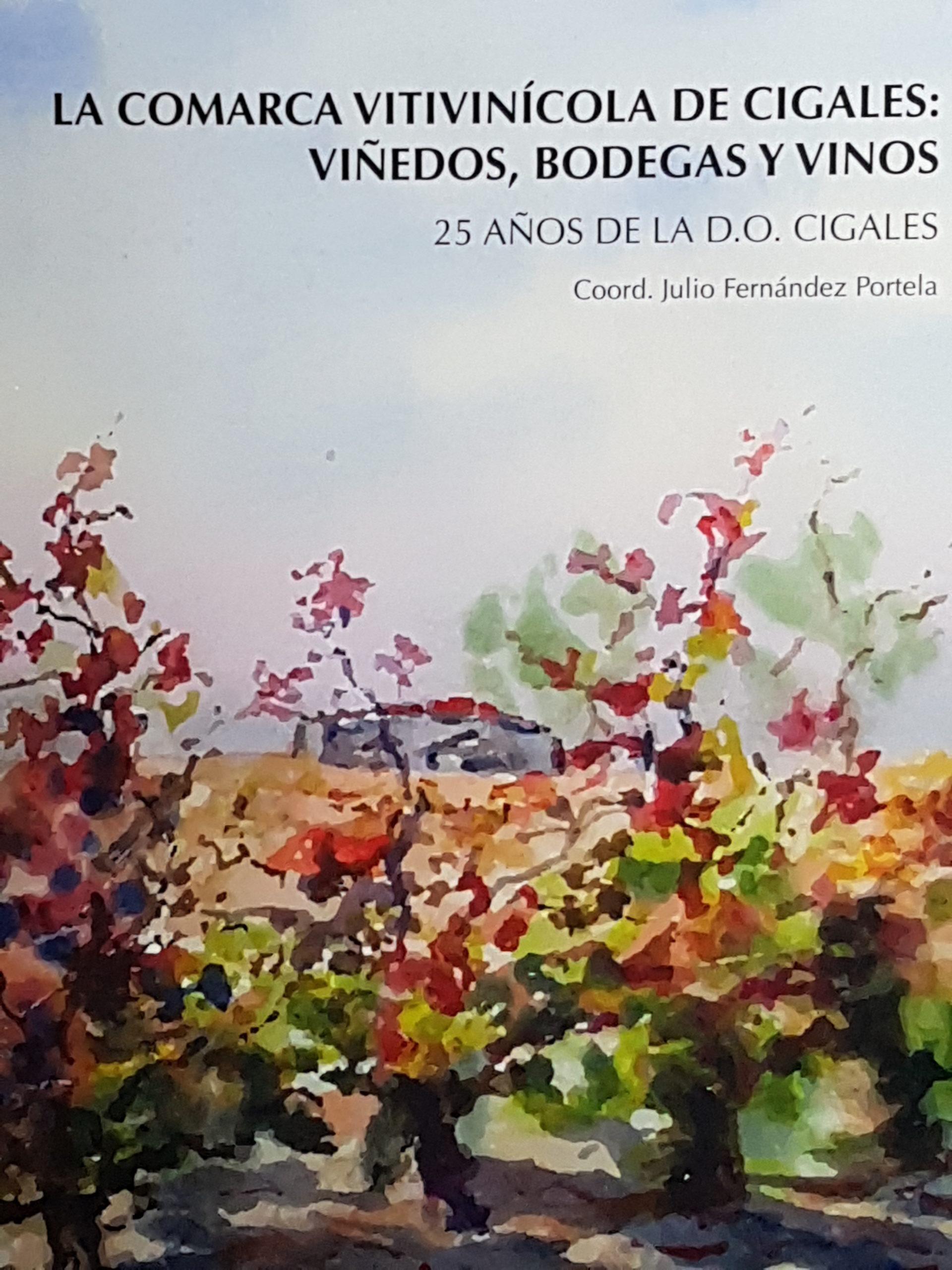 La comarca vitivinícola de Cigales